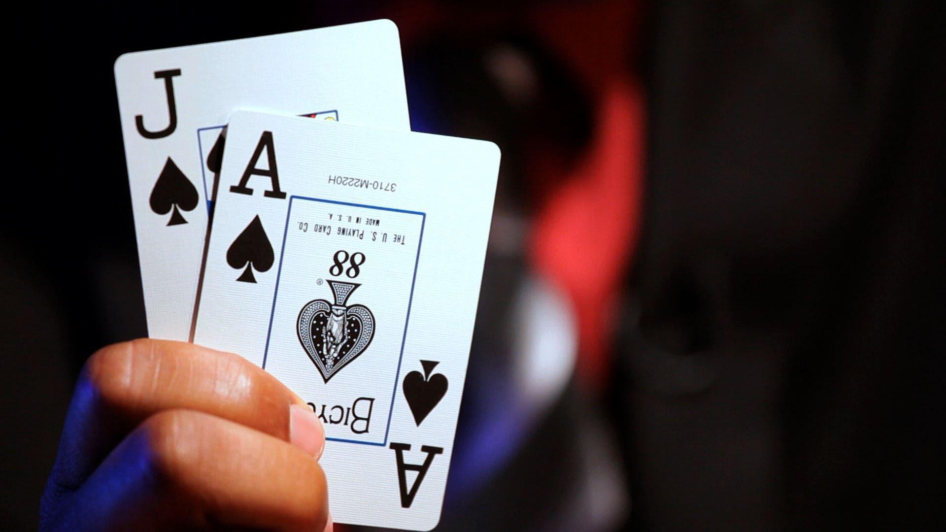 Casino Danmark Anmeldelse